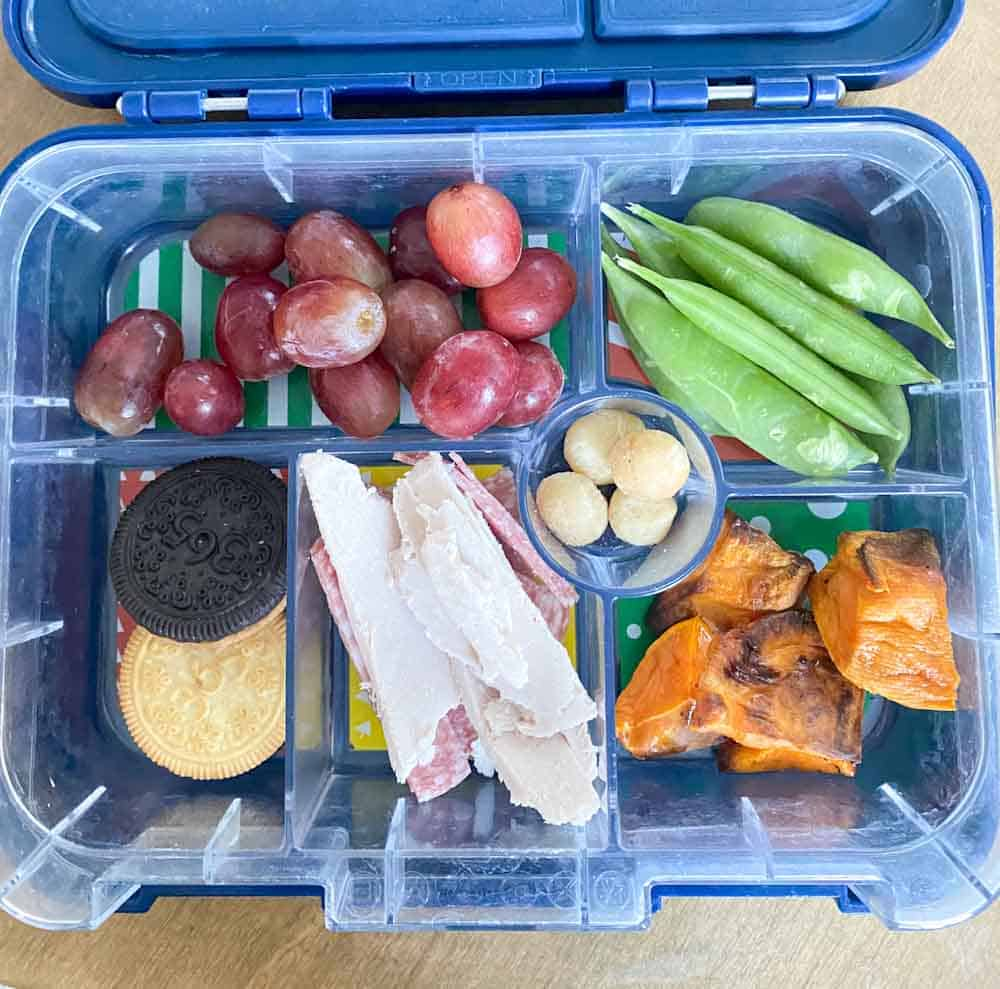 Lunch Box Ideas for School for Picky Kids - SPD